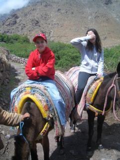 The mule trek
