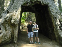 Tom and mark at giant Sequoia.
