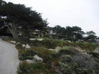 Carmel beach front drive