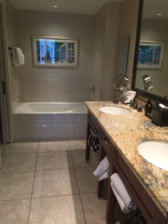 15.1451409328.huge-bathrooms-luxury-after-paia