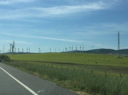 Lots of wind farms.