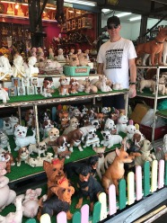 The weird & the wonderful at Chatuchak Markets